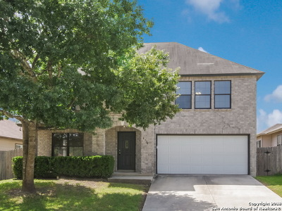San Antonio TX Single Family Home New: $204,000