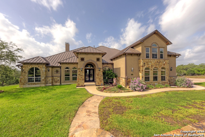 New Braunfels Single Family Home For Sale: 276 Ridge Country