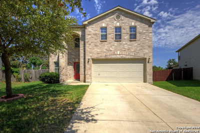 Bexar County, Medina County Single Family Home New: 7819 Baxter Peak
