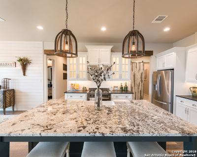 San Antonio Single Family Home New: 28025 Highland Crest