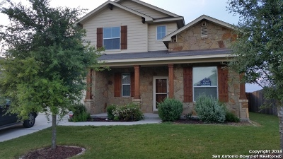 New Braunfels Single Family Home New: 875 Avery Pkwy