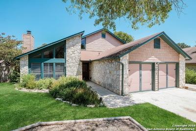 San Antonio Single Family Home New: 2019 Encino Vista St
