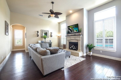 San Antonio Single Family Home New: 26123 Turquoise Sky