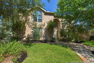 San Antonio Single Family Home New: 14103 Touch Gold