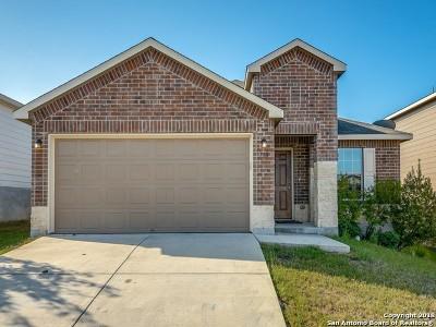 San Antonio Single Family Home New: 710 Rio Cactus Way