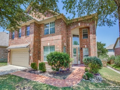San Antonio Single Family Home New: 810 Mesa Loop