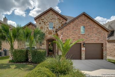 San Antonio Single Family Home New: 426 White Canyon