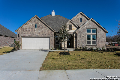 Boerne Single Family Home Price Change: 137 Destiny Drive