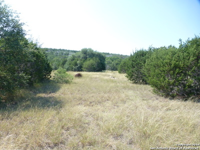 Hondo Farm & Ranch For Sale: 1496 Private Rd/Fm462 Esm