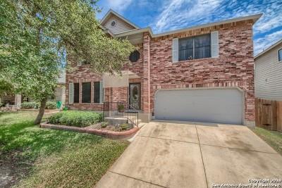 San Antonio Single Family Home New: 10118 Stone Garden
