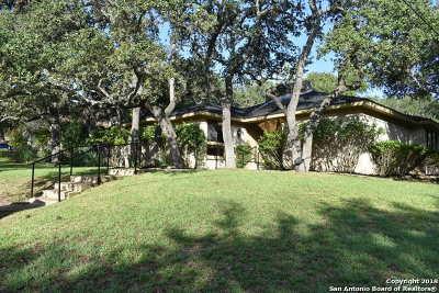 San Antonio Single Family Home New: 14319 Ben Brush St