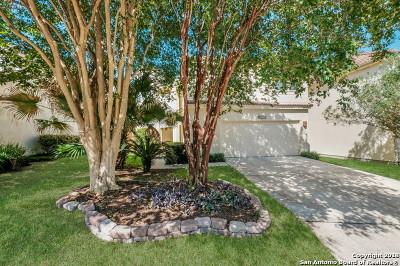 San Antonio Single Family Home New: 2539 Chestnut Bend