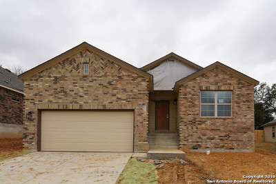 San Antonio TX Single Family Home New: $305,075