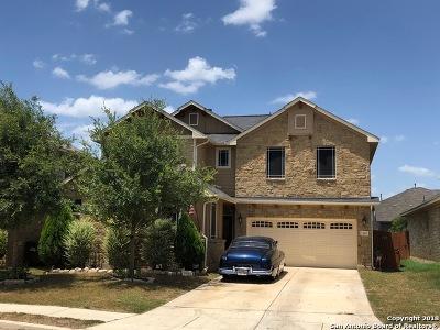 San Antonio Single Family Home New: 13035 Waterlily Way