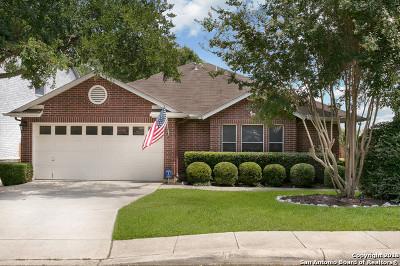 San Antonio Single Family Home New: 17919 Redriver Song