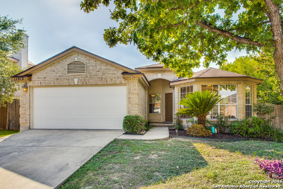 Helotes Single Family Home New: 11915 Peach Crossing