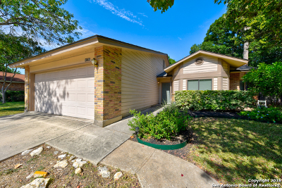 San Antonio Single Family Home New: 9138 Autumn Meadows