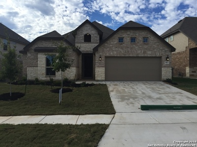 San Antonio TX Single Family Home New: $340,905