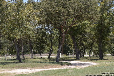 La Vernia Residential Lots & Land For Sale: 242 Oak Valley Dr