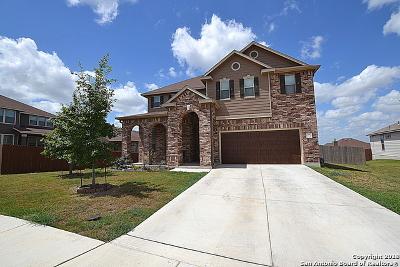 Cibolo Single Family Home For Sale: 213 Landmark Way