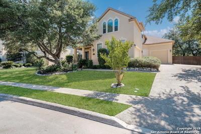 San Antonio Single Family Home For Sale: 23822 Spring Scent