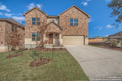 Bexar County Single Family Home For Sale: 28832 Crowley Creek