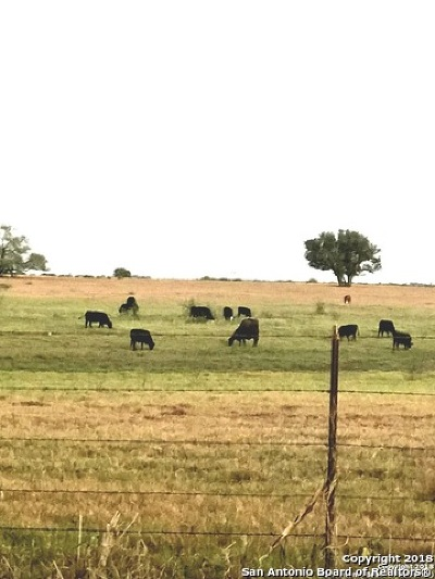 Wilson County Farm & Ranch For Sale: 53.0 Acres County Road 134