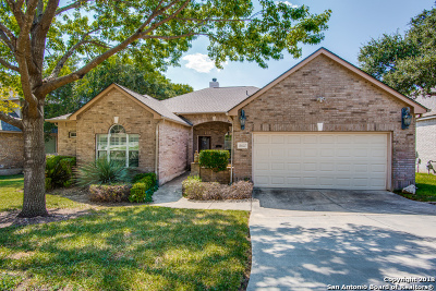 Helotes Single Family Home For Sale: 16007 Socorro Falls