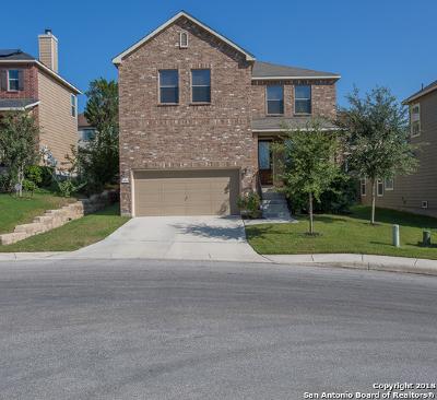 San Antonio Single Family Home For Sale: 2511 Villa Medici