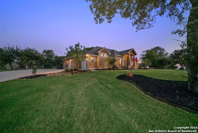 Floresville Single Family Home For Sale: 244 Abrego Lake Dr