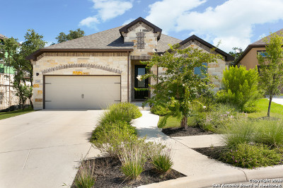 Kendall County Single Family Home For Sale: 144 Escalera Circle