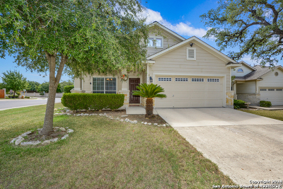 San Antonio Single Family Home For Sale: 114 Red Willow