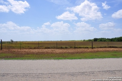 Atascosa County Residential Lots & Land For Sale: 0000 Blunzer Road