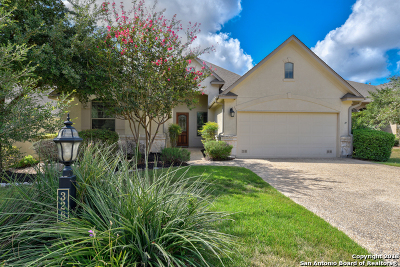 San Antonio Single Family Home For Sale: 326 Roseheart