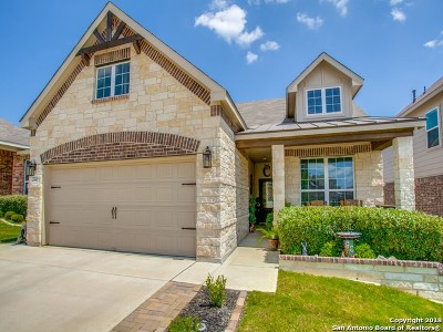 Boerne Single Family Home For Sale: 27418 Paraiso Sands