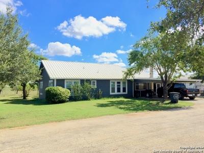 Atascosa County Farm & Ranch For Sale: 10825 Fm 1333