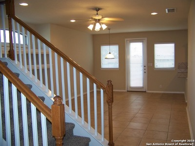 San Antonio Single Family Home For Sale: 1203 Tweed Willow