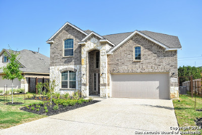 Bulverde Single Family Home For Sale: 32004 Cast Iron Cove