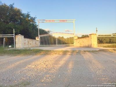 Atascosa County Farm & Ranch For Sale: 318 Wilkey Rd