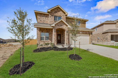 Helotes Single Family Home For Sale: 9923 Bricewood Nest