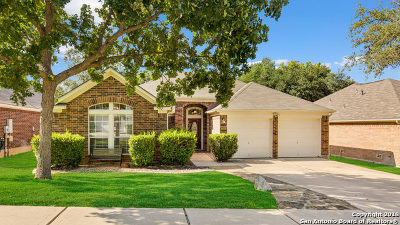 San Antonio Single Family Home For Sale: 1206 Asherton Way