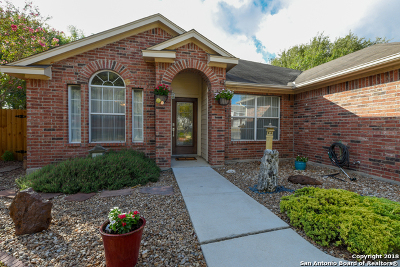 Cibolo Single Family Home For Sale: 113 Snowberry Dr