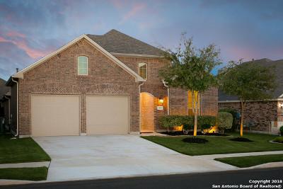 Bulverde Single Family Home For Sale: 30616 Holstein Rd