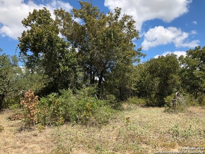 Atascosa County Residential Lots & Land For Sale: 84 Grey Fox
