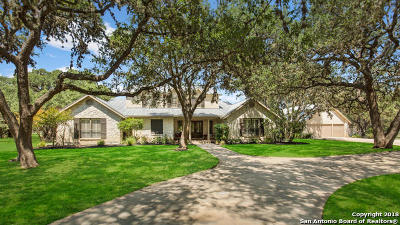 Boerne Single Family Home For Sale: 30930 Firebird Lane