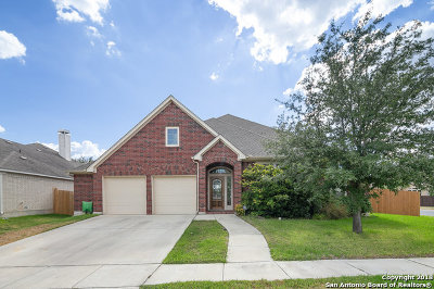 Seguin Single Family Home For Sale: 2994 Prairie Bluff