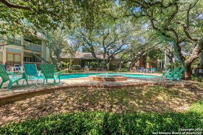 San Antonio Condo/Townhouse Back on Market: 4839 Brandeis Dr #712