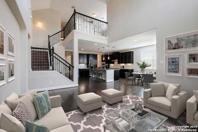 Boerne Single Family Home For Sale: 8010 Cibolo View