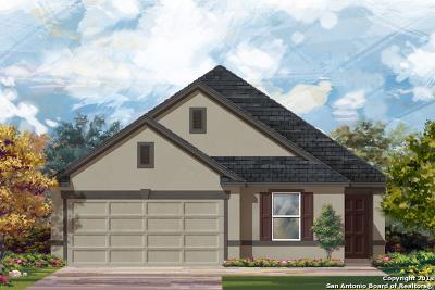 Bulverde Single Family Home Active Option: 3591 Vuitton