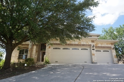 Bexar County, Comal County, Guadalupe County Single Family Home For Sale: 12539 Panola Way